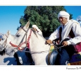 matrimoni berbero sposo cavallo cavalliere equitazione midoun isola di jerba tunisia