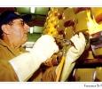 marchiatura a fuoco forme parmiggiano reggiano formaggio tipico modena emilia romagna