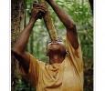 pigmeo etnia baka si disseta con liana giunga equatoriale priserva naturale wwf protezione gorilla di pianura parco nazionale lobeke camerun