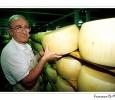 produzione parmiggiano stagionatura economia nel parco parco regionale frignano modena emilia romagna