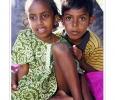 bambini scuola all'aperto sotto palme atollo di felidù arcipelago maldive oceano indiano